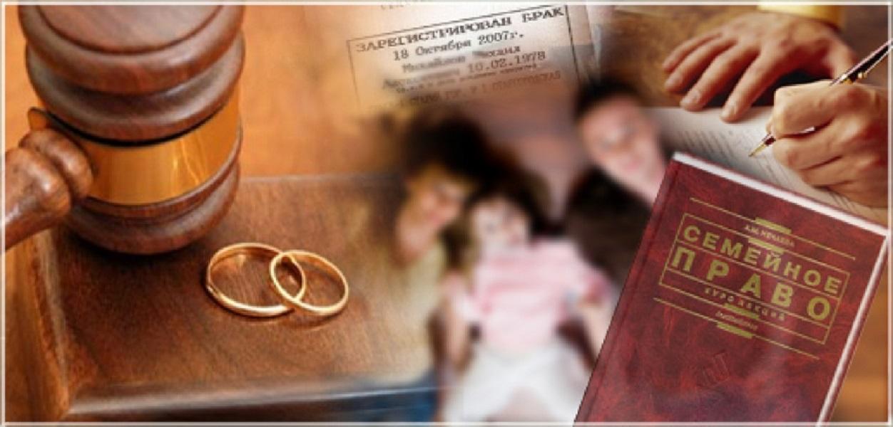 семейное право юристы